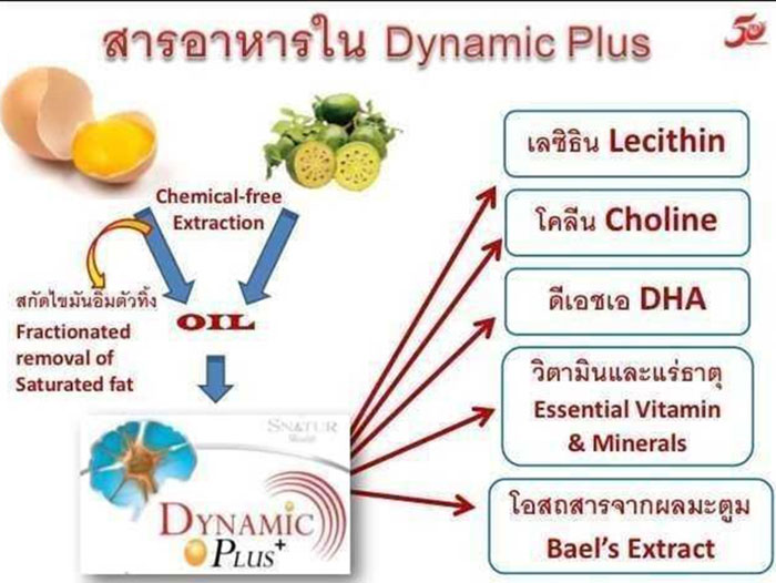 Dymamic_Plus3